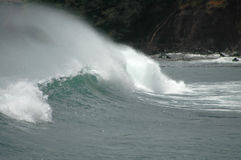 Big Maui Wave Stock Image