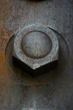 Big metallic nut Stock Image
