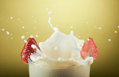 Big milk splash Royalty Free Stock Image