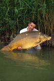 Big mirror carp Royalty Free Stock Image