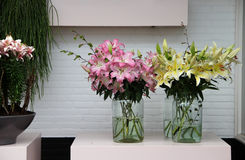 Big mix of amazing flowers in vases. In the light room Stock Photos