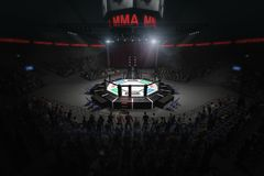 Big mma fighting arena with lots of fans 3d rendering vector illustration