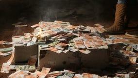 Big money bills are burning stock video