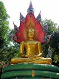Big monk Royalty Free Stock Photography