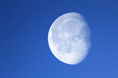 Big moon Royalty Free Stock Images