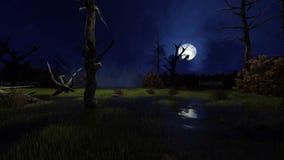 Big moon above creepy swamp at misty night 4K