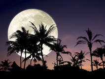 Big moon and beautiful night sky. Royalty Free Stock Photography