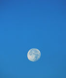 Big moon Royalty Free Stock Image