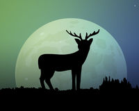 Big moon in the night sky. Deer silhouette. Big moon in the night. Deer silhouette vector illustration. Beautiful sky with a glow of green and blue Stock Images