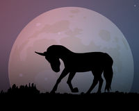 Big moon in the night sky. The silhouette of the unicorn. Big moon in the night. The silhouette of the unicorn vector illustration. Beautiful sky purple Stock Images