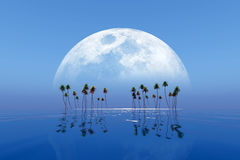 Big moon over island Stock Images