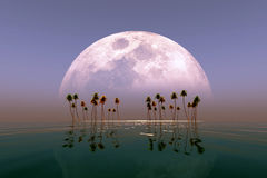 Big moon over island Royalty Free Stock Image