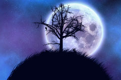 Big moon and tree. Big moon in the starry space and tree silhouette Royalty Free Stock Images