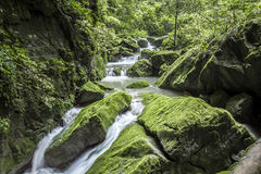 Big mossy sandstone boulder in clear mountain river Royalty Free Stock Photography