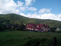 A big mountain. Big green mountain near rhe city Stock Image