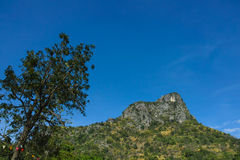 Big mountain landscape on clear blue sky. With big tree at swiss sheep farm, Cha-am, Thailand royalty free stock photos
