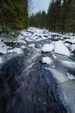Big mountain river in winter Stock Image