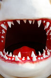 Big mouth. Model shark mouth closeup, front teeth are sharp Stock Images
