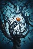 Big mystic tree with halloween pumpkin and skeletons vector illustration