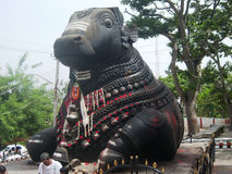 Big Nandi statue at Nandi Hills near banglore Stock Images