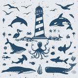 Big nautical set Royalty Free Stock Image