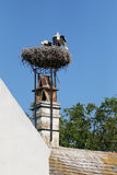 A big nest of Stork birds on top of the roof in Austria Royalty Free Stock Photo