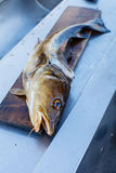 Big nowegian fish on cutting board Stock Photo