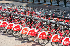 The big number of City Bicycles on a parking Stock Photography