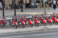 The big number of City Bicycles on a parking Stock Photos