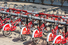 The big number of City Bicycles on a parking Royalty Free Stock Images