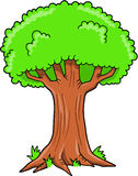 Big Oak Tree Vector Stock Photos