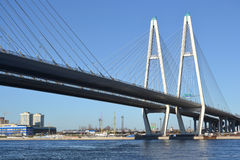 Big Obukhovsky Bridge in St.Petersburg. Big Obukhovsky Bridge in St.Petersburg at sunny spring day, Russia stock images