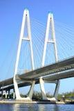 Big Obukhovsky Bridge in St.Petersburg. Big Obukhovsky Bridge in St.Petersburg at sunny spring day, Russia royalty free stock photo