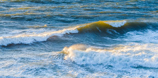 Big ocean waves glowing in sunset. Royalty Free Stock Images