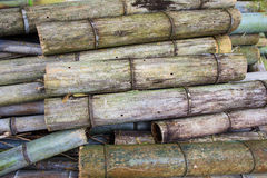 big old bamboo background Stock Photos
