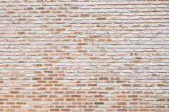 Big old brick wall pattern use as construction background,floor Stock Images