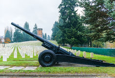 Big old gun in the grave yard in military zone.  Royalty Free Stock Photography