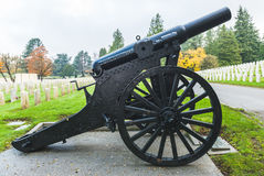 Big old gun in the graveyard of military zone. Royalty Free Stock Photo