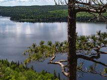 Big old tree on Centennial Rock. Old worn evergreen standing on Centennial Ridge in Algonquin Provincial Park overlooking a very still whitefish Lake royalty free stock images