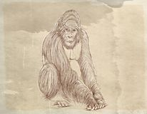 A big one gorilla Series of animals with vintage background, artistic postcards. Series of animals with vintage background, artistic postcards stock illustration