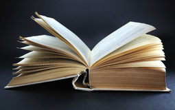 Big open book Royalty Free Stock Image