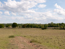 A big open shot of landscape in the uk of a field with trees in Royalty Free Stock Photo