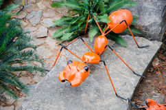 Big orange ant Royalty Free Stock Images