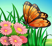A big orange butterfly at the garden. Illustration of a big orange butterfly at the garden Stock Image