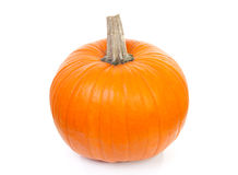 Big orange pumpkin Royalty Free Stock Image