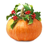 Big orange pumpkin with holly leaves and berries Royalty Free Stock Images