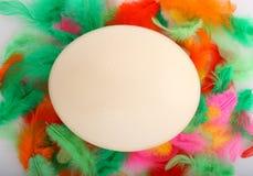 Big ostrich egg Stock Photo