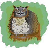 Big Owl. Owl sat on an old tree and watches in the darkness stock illustration