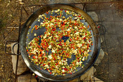Big paella. Cooking vegetables as the first ingredient for a big paella, made on a fireplace stock image