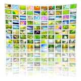 Big Panel of TV. Showing Nature movies. All images belongs to me stock photos
